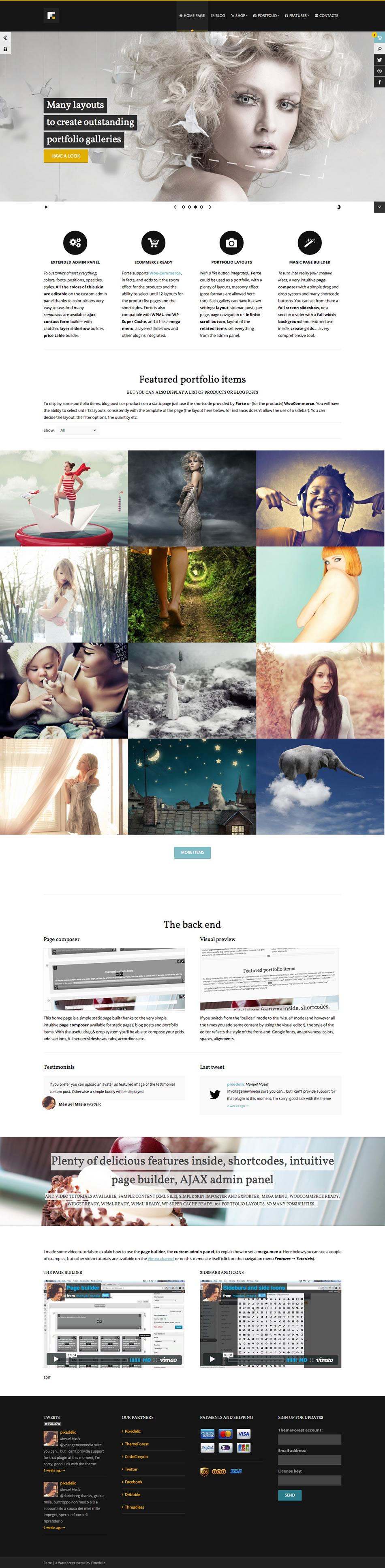 forte wordpress theme screenshot