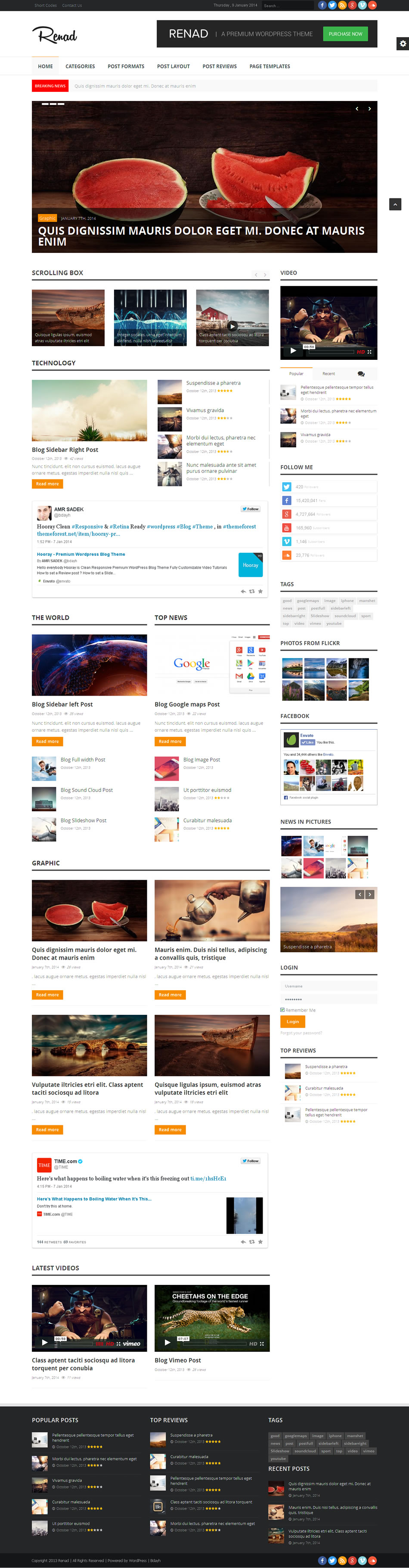 renad wordpress theme
